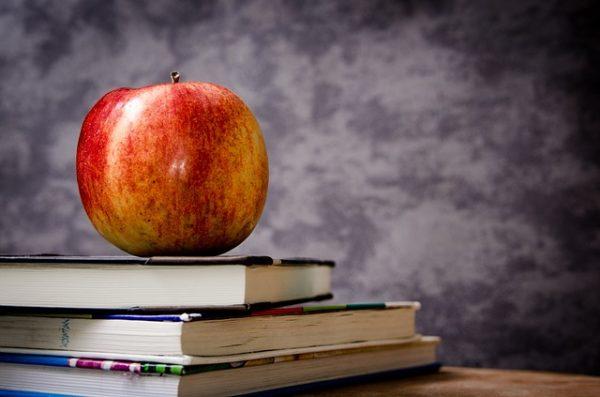 Ernährung in Fachbüchern