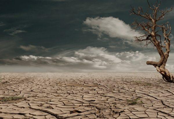Ohne Wasser in die Wüste? Natürlich nicht. Deinen Durst solltest du aber ebenso immer im Auge haben, auch ohne den Ausflug in die Wüste.