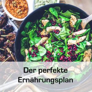 Ein Klick bis zum perfekten Ernährungsplan